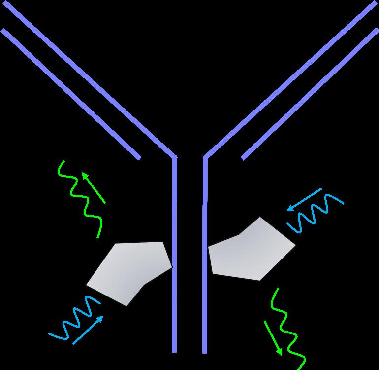 fluorochromes fluorescence flow cytometry
